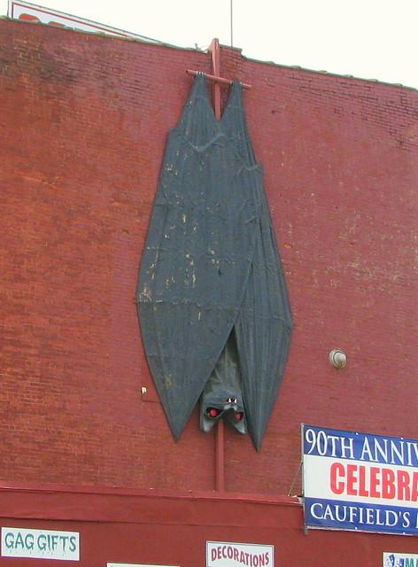 World's Largest Bat - Louisville