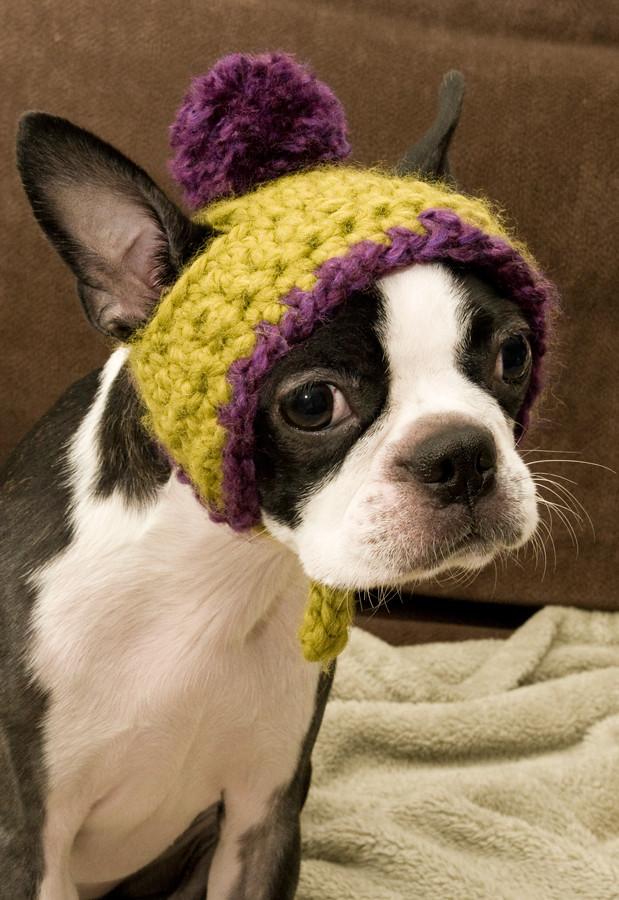 babber's bonnet