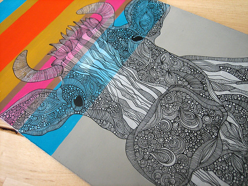 Vaquita details