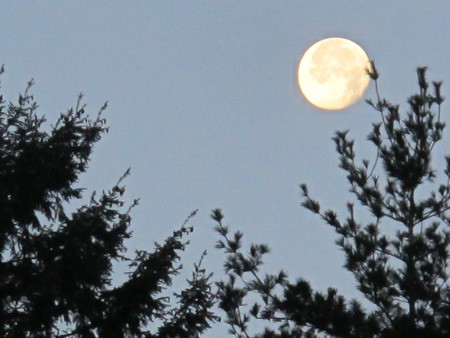 Moon Over Langley