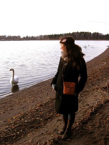 Swan Handler