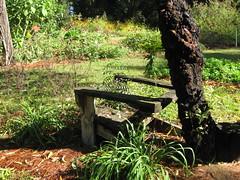 Lazy garden