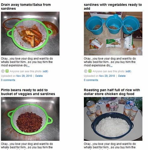 Tasty...Homemade dog food recipe