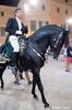 Caixer Senyor (Mateu Tomas) Tags: ciutadella menorca santjoan caixer senyor festes cavalls mateutomas horse caballo cavall