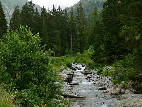 Vésubie River