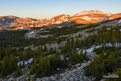Snow Patch Sunrise (kevin-palmer) Tags: cloudpeakwilderness highlandpark bighornmountains bighornnationalforest wyoming nikond750 tamron2470mmf28 early morning sunrise sunny sunshine blue sky boulders green grass pine trees gold golden light snow snowcapped backp