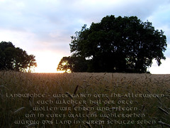 Die Götterehrung (VFGH) Tags: hamburg norden odin futhark norddeutschland wikinger götter germane asatru runen ehrung vfgh
