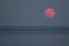 Dry Moon, Wet World (Jay:Dee) Tags: moon water evening dusk luna full moonrise lakeontario