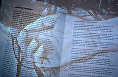 La verdad y la mentira... un enigma sin fin... (conejo721*) Tags: argentina palabras mardelplata sentir poesa poema conejo721 librodepomas