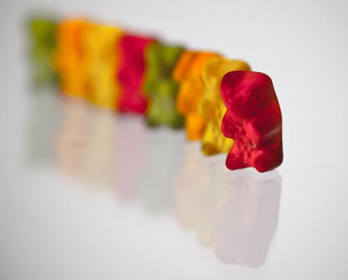 #55 Bear Parade