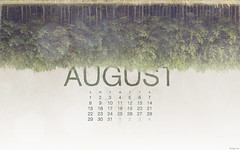August 2010 Calendar (kriegs) Tags: desktop trees wallpaper art forest photoshop calendar widescreen digitalart august desktopwallpaper 1920x1200 iphonewallpaper