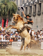 El pangar (Eduardo Amorim) Tags: horses horse southamerica caballo uruguay cheval caballos cavalos prado montevideo pferde cavalli cavallo cavalo gauchos pferd hest hevonen chevaux gaucho  amricadosul montevidu hst uruguai gacho  amriquedusud  gachos  sudamrica suramrica amricadelsur  sdamerika jineteada   americadelsud gineteada  americameridionale semanacriolla semanacriolladelprado eduardoamorim iayayam yamaiay semanacriolladelprado2010 iwalymtlf ilymmeamtlasmfl