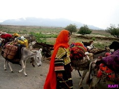 Kochian, Nomades, کوچيان (Rafiullah Mandokhail) Tags: nomades zhob kochian pashtoonkhwa mandokhail کوچيان