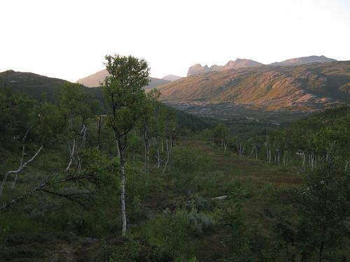 Senja view