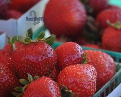 Anaphrodisiac (2HandzUp1913) Tags: fruit strawberry berries seed strawberries stamen fiber aphrodisiac vitaminc potassium nonfat dsc0998 folicacid anaphrodisiac lowincalories