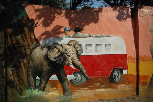 elephantsandcombi