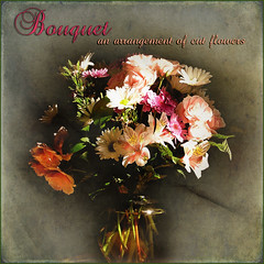 bouquet (Muffet) Tags: flowers square definition bouquet dictionary