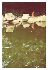 برکه ی خاطره ها 1 (pedramatic) Tags: friends lake game childhood fun 50mm kid child play iran persia visit memory 23 tryst ایران fr f63 باغ کودک دختر آب قرمز خاطره انعکاس پسر ordibehesht آفتاب pedram canonlens حوض آبی ماهی برکه هنوز سایه جایپا دلتنگ ماهیقرمز آیینه کاج canoneos450d کانن اردیبهشت آشنایی دلتنگی canon1855mmis خیال ماهیگلی پدرام حوضچه pedramatic منوتو دراماتیک پدراماتیک بیتو لحظههایبیتو بیتوبودن برکهیخاطرهها یادآور تهباغ بهیاد خرداد89 maxencecyrinnocarsgoarcadefirecover