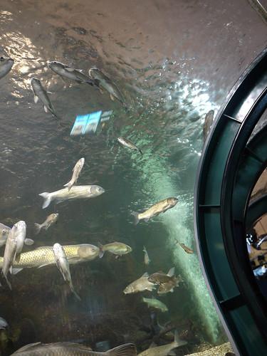 水のトンネル#1