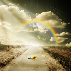 ~ toward the rainbow ~ (~ Pixel Passion ~) Tags: road light sky sun texture nature field grass clouds landscape hope sadness rainbow corn gloomy natural song path sunny sunflower conceptual sunrays ceral