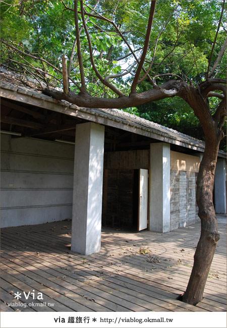 【彰化】彰化藝術高中~教室與森林結合的美麗校區26