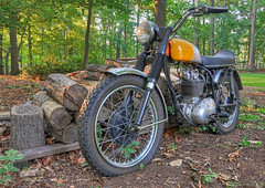 BSA in the Backyard (Reid Kasprowicz) Tags: classic bike backyard ride mechanical spokes engine tire motorcycle motor headlight hdr woodpile bsa bsamotorcycles birminghamsmallarmscompany b44victorspecial