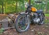 BSA in the Backyard (Reid Kasprowicz) Tags: classic bike backyard ride mechanical spokes engine tire motorcycle motor headlight hdr woodpile bsa bsamotorcycles birminghamsmallarmscompany b44victorspecial