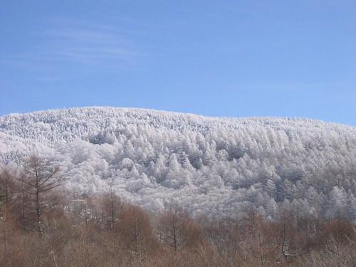 初冬の縞枯山 07.12.19 by Poran111
