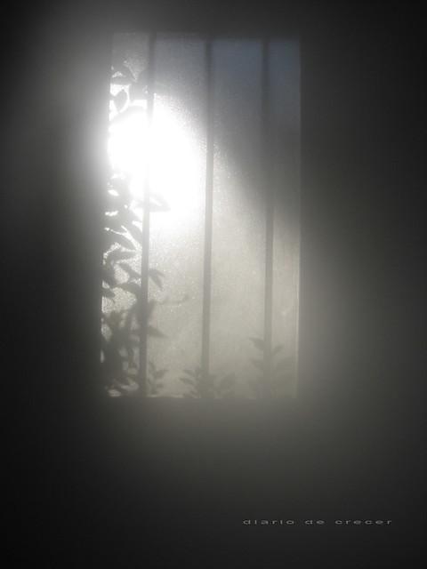 sol en mi ventana