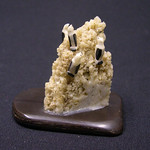 """<b>Rookery</b><br/> Unknown, Eskimo American (ivory, ca. 1969) LFAC#2008:01:32<a href=""""http://farm5.static.flickr.com/4127/4996994600_173c5f0cab_o.jpg"""" title=""""High res"""">∝</a>"""