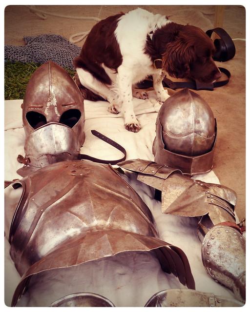 Herstmonceux Medieval Festival ~ guard dog