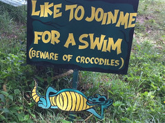 Safe Swimming Sign