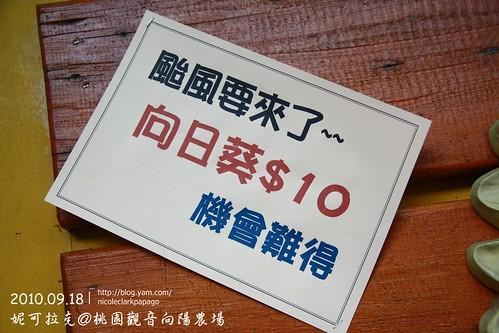 桃園觀音向陽農場20100918-094