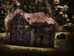 Metal Roof and Vines (dbnunley) Tags: abandoned landscape finepix hdr blueridgeparkway hs10 nikcolorefexpro topazsimplify topazdetail