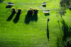 """17'3"""" and counting (Rob Piazza) Tags: street shadow grass vancouver photography nikon photographer lawn fotografia robertpiazza robpazza"""