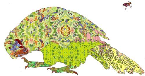 Kakapo Art Print by Nicole FitzGibbon