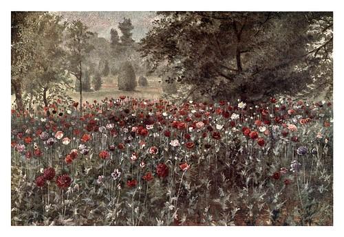 009-El campo de amapolas-Kew gardens 1908- Martin T. Mower