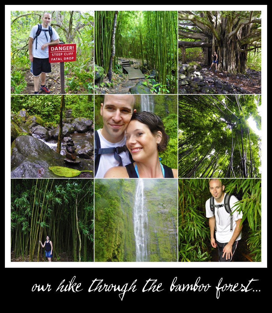 hike through bamboo forest...