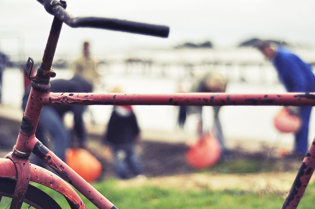 cykel & bojar