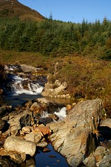 NorthGlenSannoxWater18 (Assja) Tags: autumn mountains fall water leaves forest landscape golden scotland highlands rocks stream heather herbst glen hills naturereserve valley bracken rowan isleofarran birches indiansummer birchtree schottland wirbel herbststimmung ruska naturreservat hochland wildbach zauberwald birkenwald farnkraut heidekraut ebereschen torfmoor remarkabletrees feenwald wildpfad thebrackenisgoldinthesun northendofarran subarktischestimmung