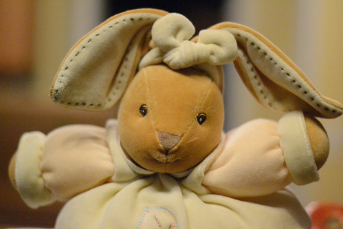 Plush Bunny - Nikon D3100 @ ISO 6400