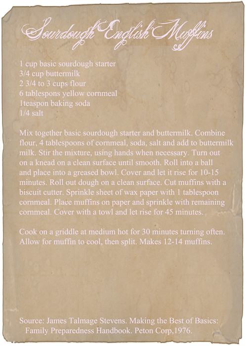 Sourdough-Muffins-Recipe