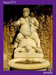 La Fontana del Bacchino (aenede) Tags: italy sculpture fountain gardens garden florence italia turtle fuente jardin palace escultura florencia firenze baco tortuga palazzo pitti fontana jardines tartaruga palacio scultura giardinodiboboli bacchino grotesco grottesco