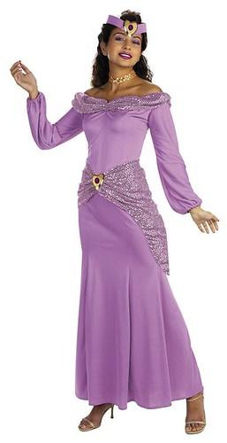 Aladdin Disney Jasmine Prestige Adult Costume