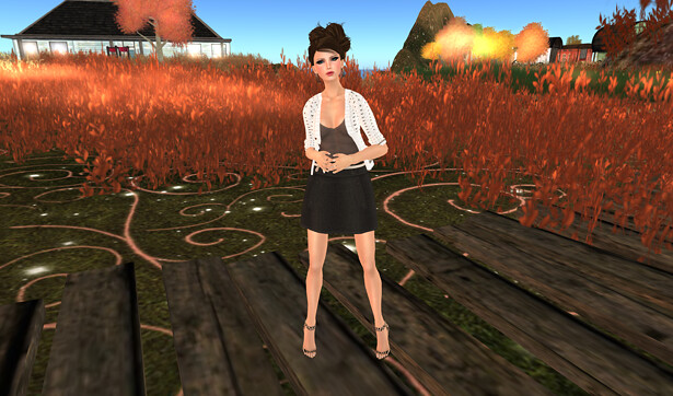 Blogged - Berries Inc.