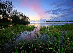 Castle Loch Sunset (Charlotte Brett Photography) Tags: sunset lake reeds scotland loch dumfriesandgalloway lochmaben castleloch