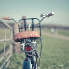 bike ride ({cindy}) Tags: grass bike bicycle fence square bokeh explore textures frontpage flypaper