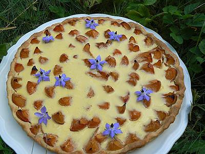 tarte à l'abricot et bourrache.jpg