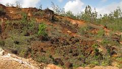 gossan cover to sulphide (kuroko) ore (bhaskarroo) Tags: fiji mine fe udu kuroko gossan vanualevu nukudamu