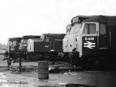 Crewe North, March 1969. (Kingfisher 24) Tags: england cheshire railway depot halina35x diesellocomotives